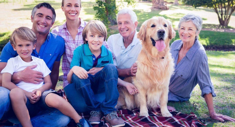 Quelle race de chien pour une famille ?